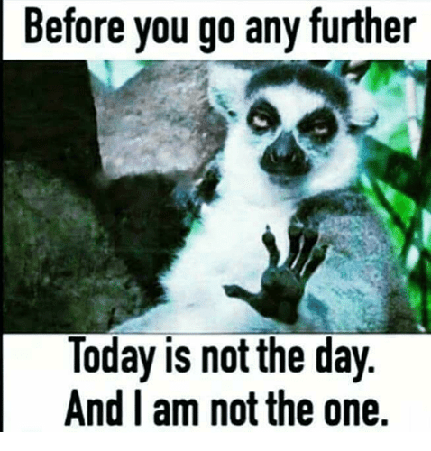 before-you-go-any-further-today-is-not-the-day-5530128